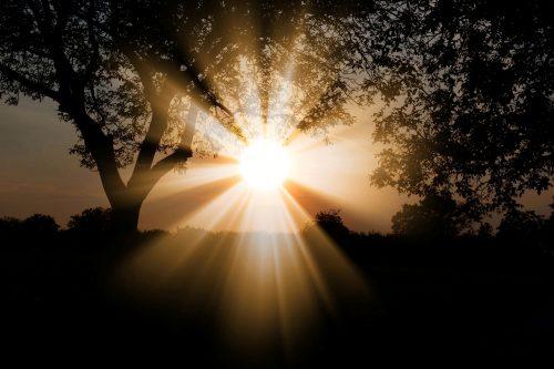 sun-3130638_1920